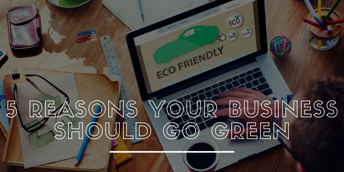 reasons your business should go green